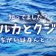 イルカとクジラの違いは?