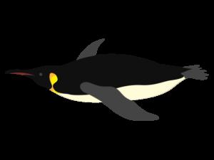 コウテイペンギンのイラスト