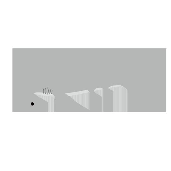 シロシュモクザメのイラスト