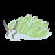 オオアリモウミウシのイラスト